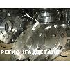 Заглушка 1-80 ст.12Х18Н10Т ОСТ 34-10-428