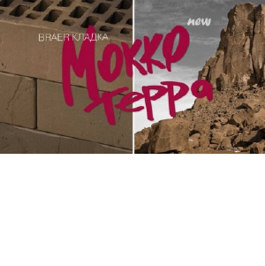Новинка от Группы Braer: кирпич Браер кладка Мокко, поверхность Терра