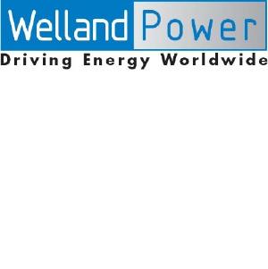 Выгодное предложение на дизель генераторы Welland Power!