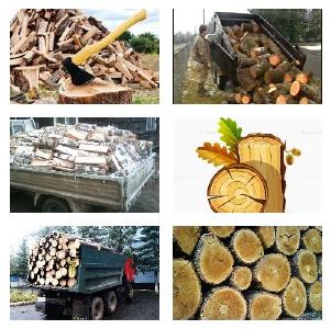 Дрова твёрдых и мягких пород деревьев.